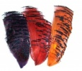 Golden Pheasant Tippets Nat & Dyed
